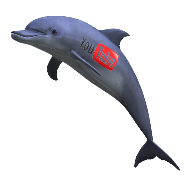 holly white youtube dolphin